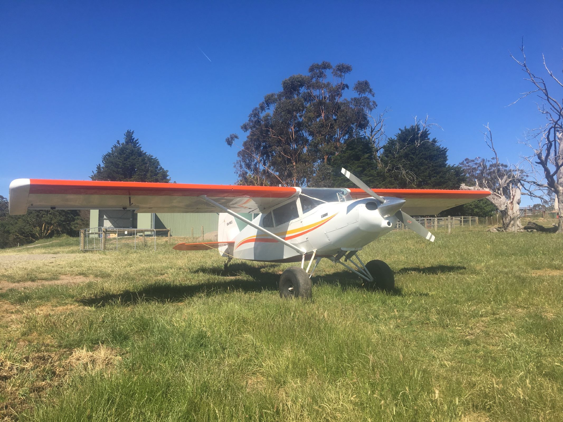 Bearhawk Aircraft For Sale